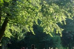 2009-08-23-WiE-84